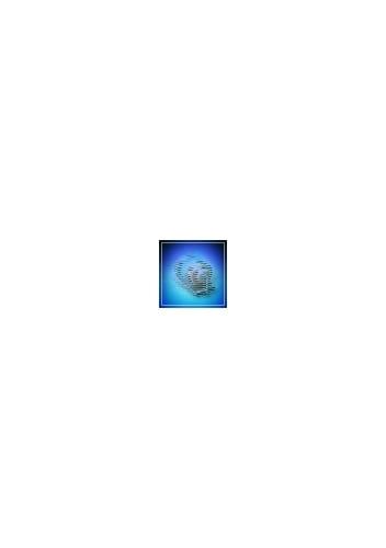 Warp Disruption Field Generator I Blueprint (Eve Online BPO)